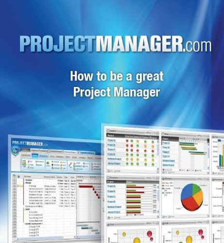 'How to be a Great Project Manager: Project Management (Kindle Edition)' by Jason Westland